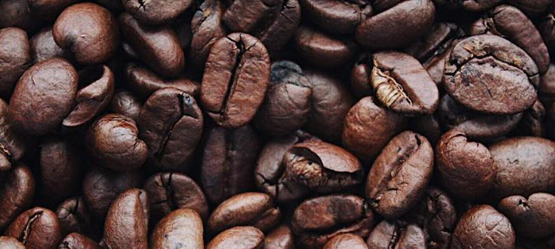 The Background to our Beans – plastic-free coffee beans now in stock.
