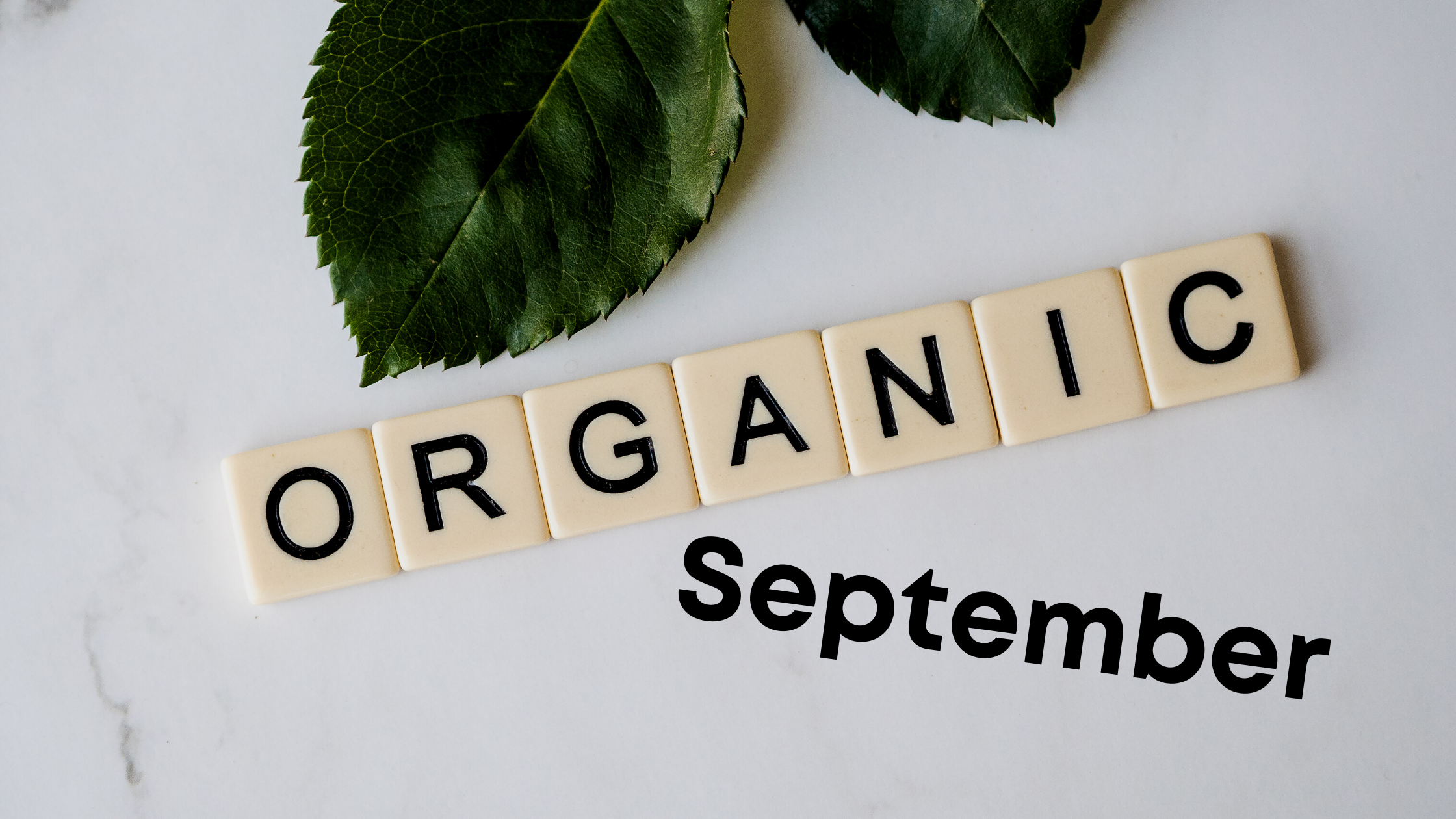 Why go Organic this September?